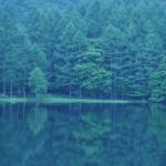 長野県 御射鹿池(みしゃかいけ)は画家 東山魁夷も描いた池!マツコの知らない世界
